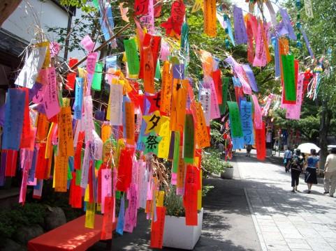Tanabata.jpeg