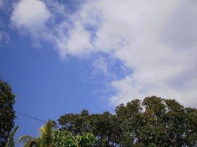P3152084.jpg