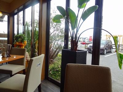 CAFE Suginoki(カフェ すぎのき)店内の様子