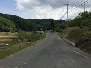 2015429-07.jpg