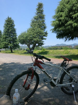 サイクリング1505