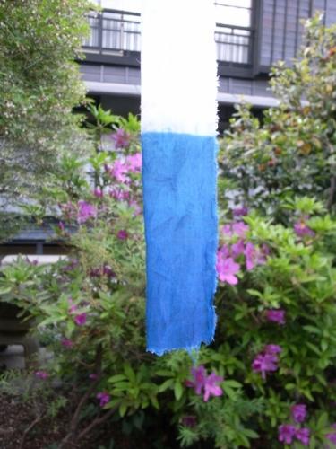 20150429西藍染02