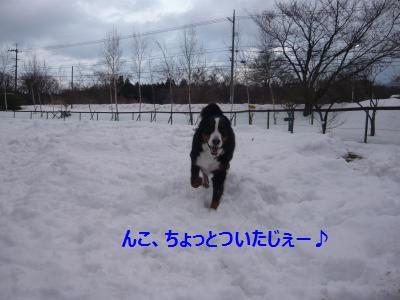005_convert_20150104220010.jpg