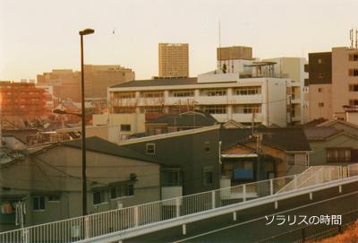 987東京2月土手2