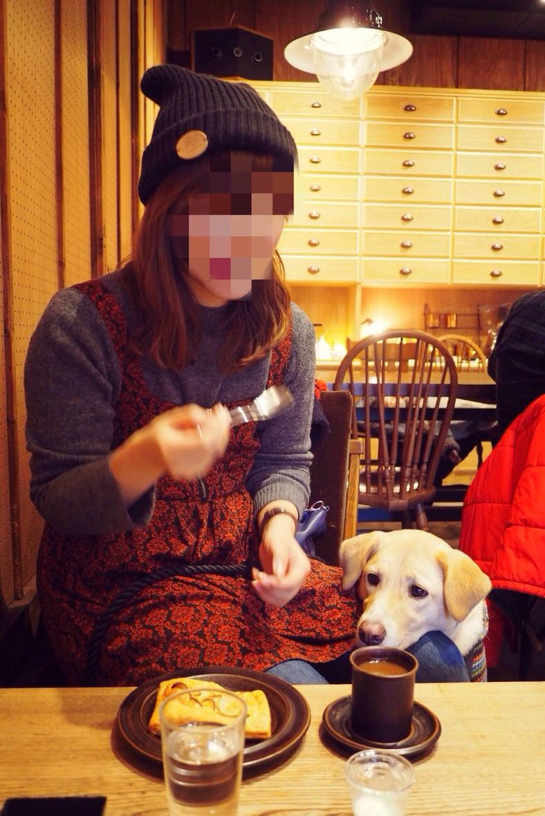 ヒキダシカフェ わんこ 犬