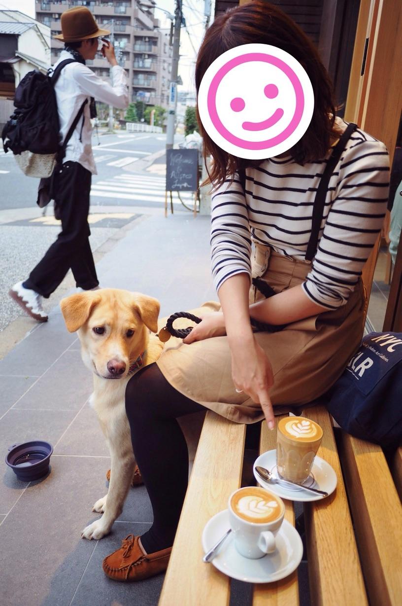 オールプレスエスプレッソ わんこ 犬
