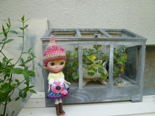 京子さんのお庭♪