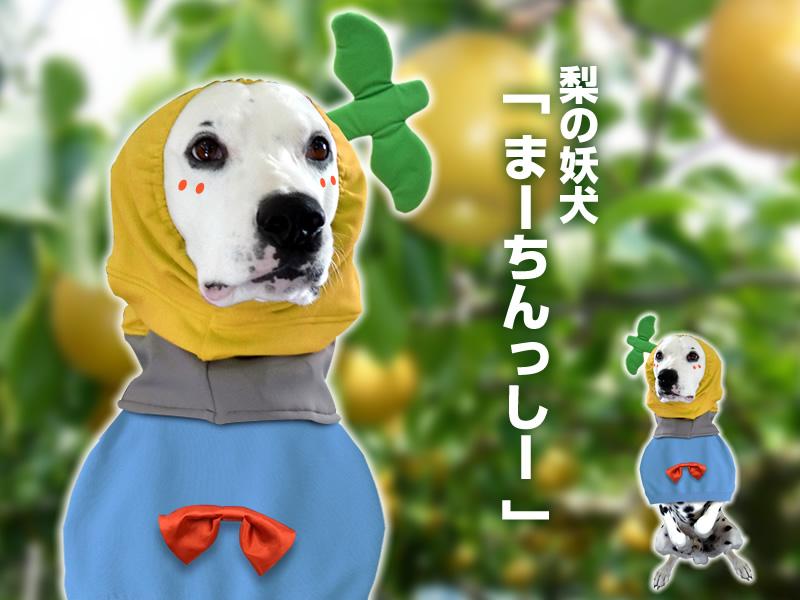 梨の洋犬マーチンシー