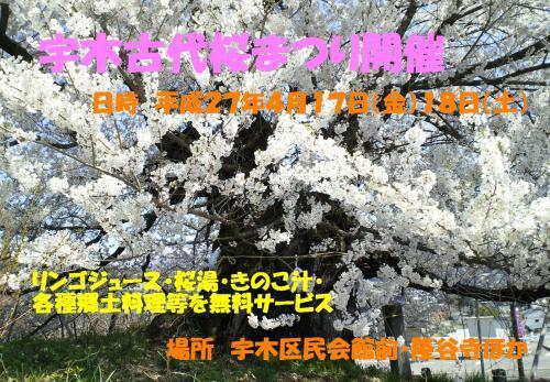 平成27年古代桜まつりポスター(27.4.4)