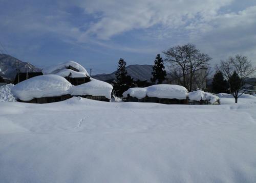雪の重み・・・(27.1.26)