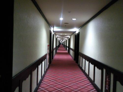 長~い廊下(27.1.29)