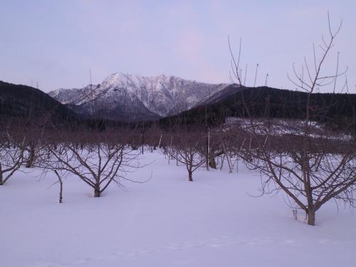 高社山とリンゴ畑(27.2.5)