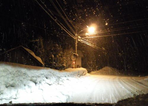 雪の夜(27.2.14)
