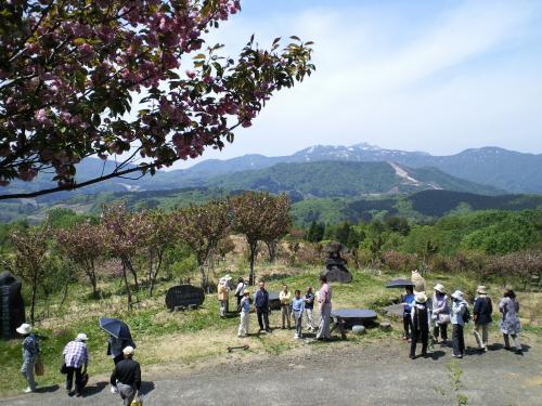 谷川新田と米山(27.5.3)