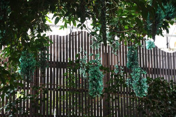 生態系公園5