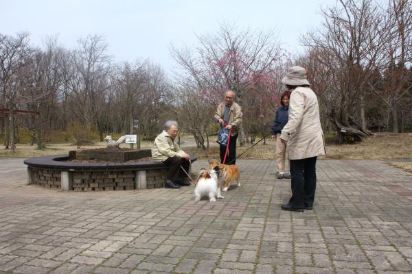 生態系公園15