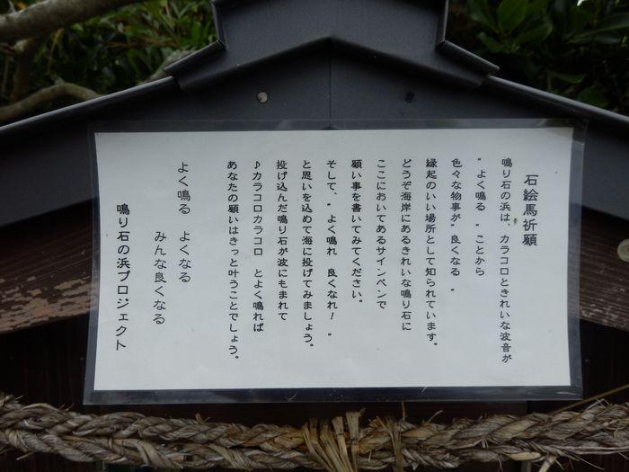 万ちゃん馴らしツー (20)