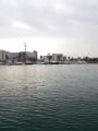 大浜28Dec2014