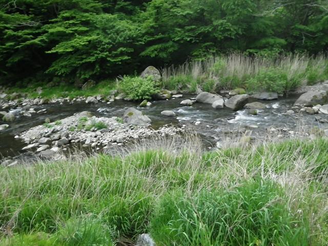 傍を流れる鳴子川