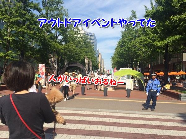 20150621-6.jpg