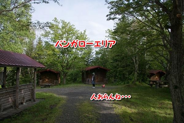 20150628-7.jpg