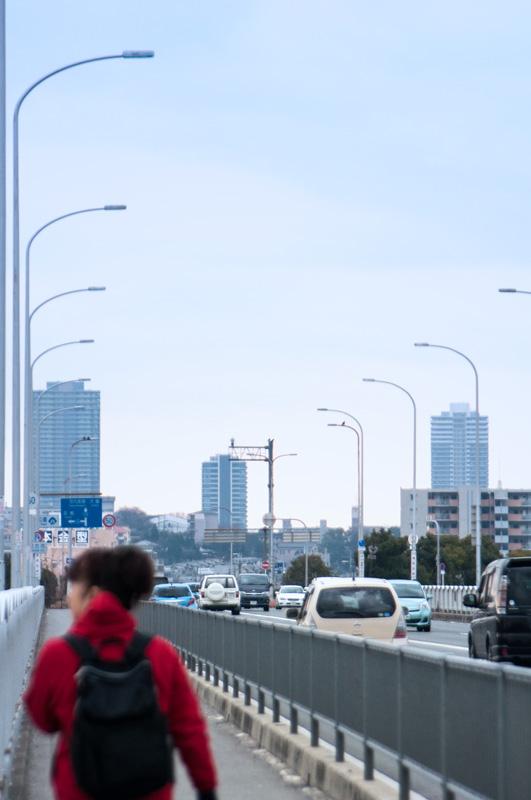 枚方大橋 (1)