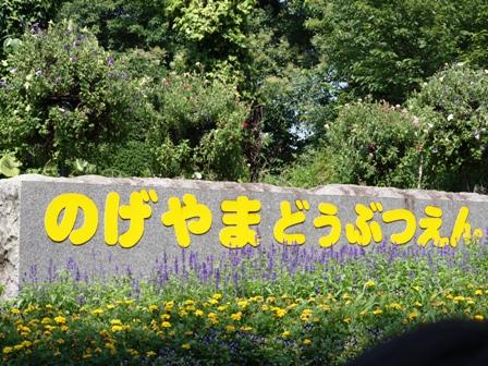 野毛山動物園その3