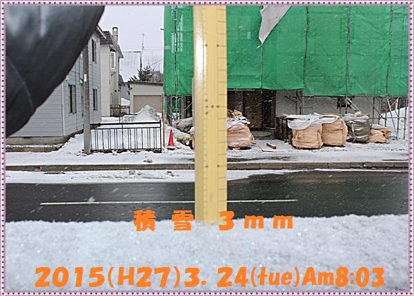 IMG_3230_20150328171338252.jpg
