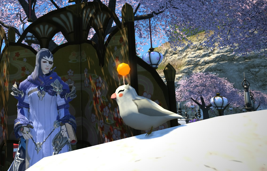 モーグリ小鳥1