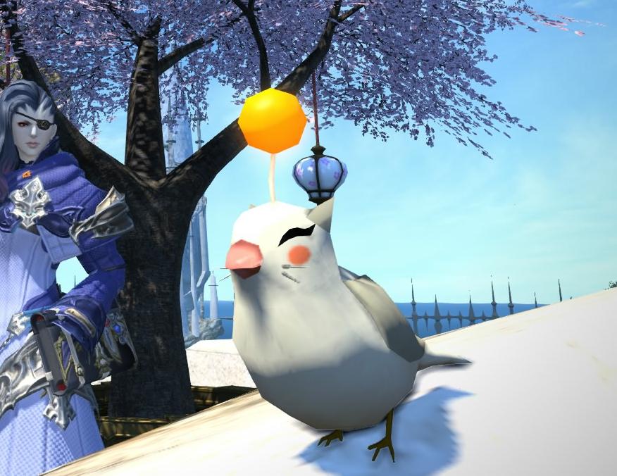 モーグリ小鳥2
