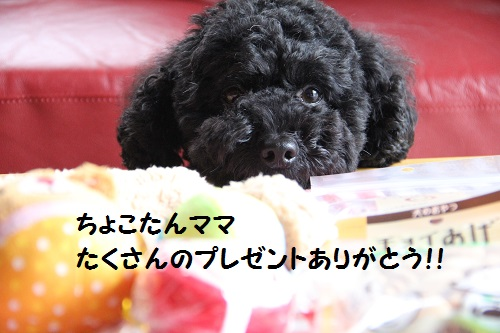 IMG_66072.jpg