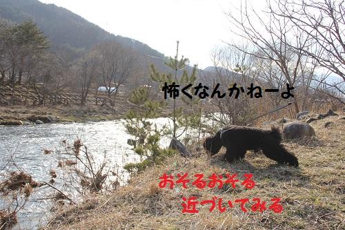 IMG_68492.jpg
