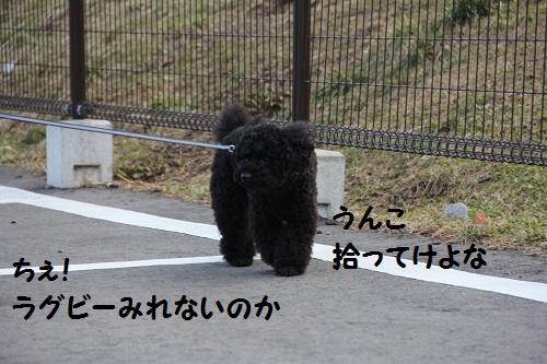 IMG_68762.jpg