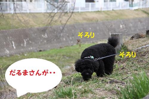 IMG_70602.jpg