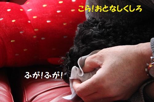 IMG_73472.jpg