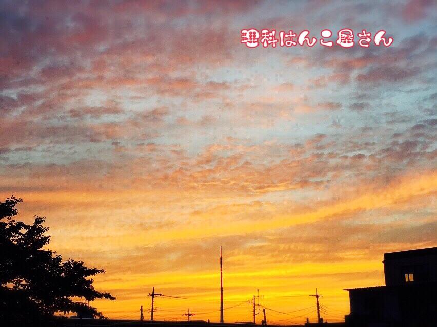 20150525230426323.jpg