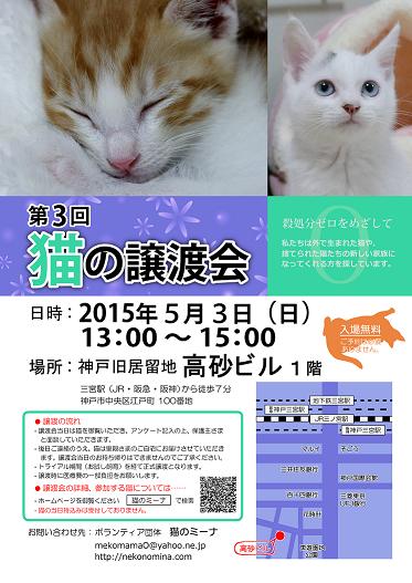 猫の譲渡会_5月3日