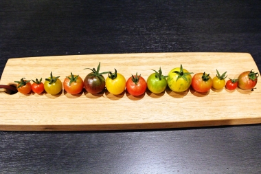 foodpic6218039.jpg