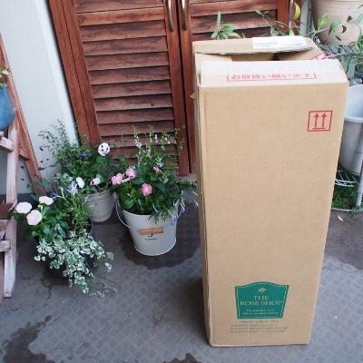 箱、長っ!