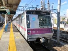 D1553S