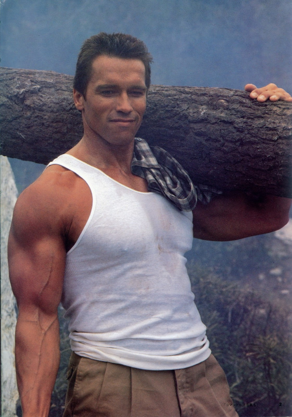 Arnold Schwarzenegger as John Matrix