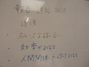 P5226757 (300x225)