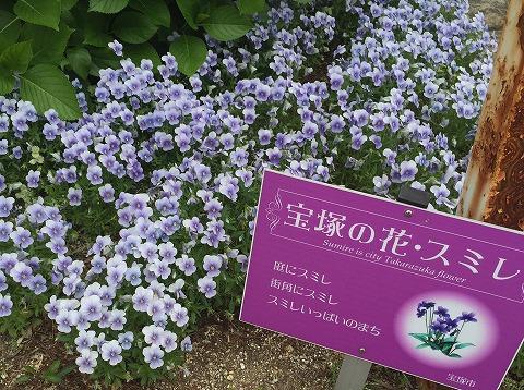 20150429宝塚稽古録音
