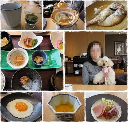 biwa dog朝食