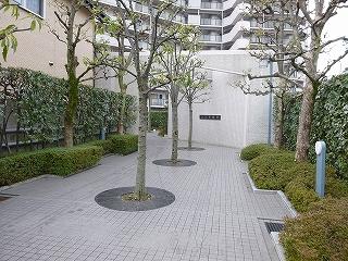コスモ初芝blog (14)
