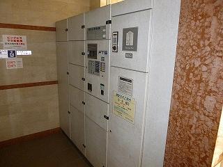 P10100284 (20)