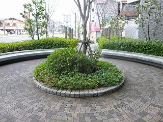 エスリード堺三国ヶ丘 (18)