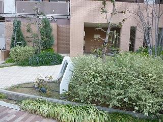 ルイシャトレ鳳blog (2)