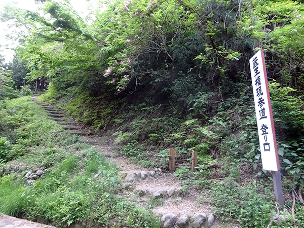 吉野ヶ岳04