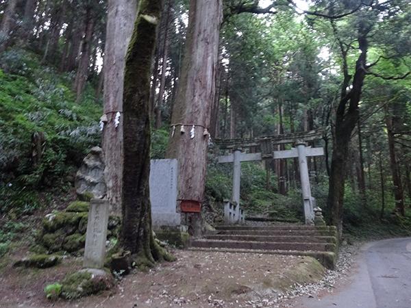 吉野ヶ岳01